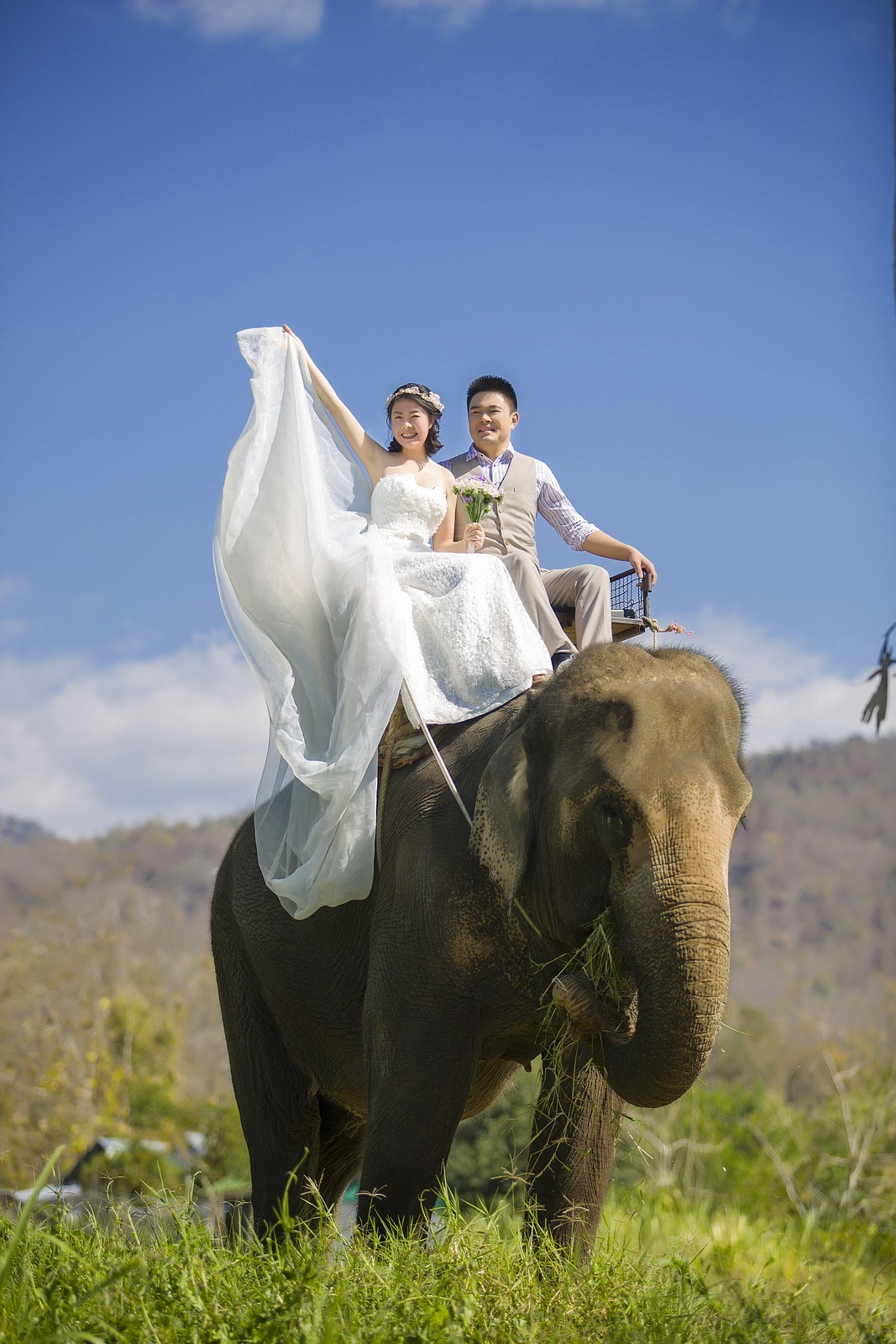 Chiang Mai  Overseas Pre-wedding Photography