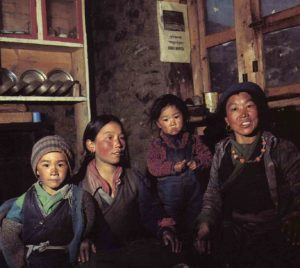 mtDNA Lineage Expansions in Sherpa Population Suggest Adaptive Evolution in Tibetan Highlands