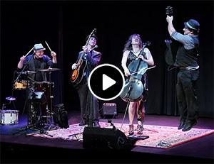 Sonoma County Musicians
