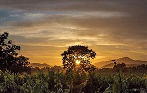 Sunset by Jason Baldwin
