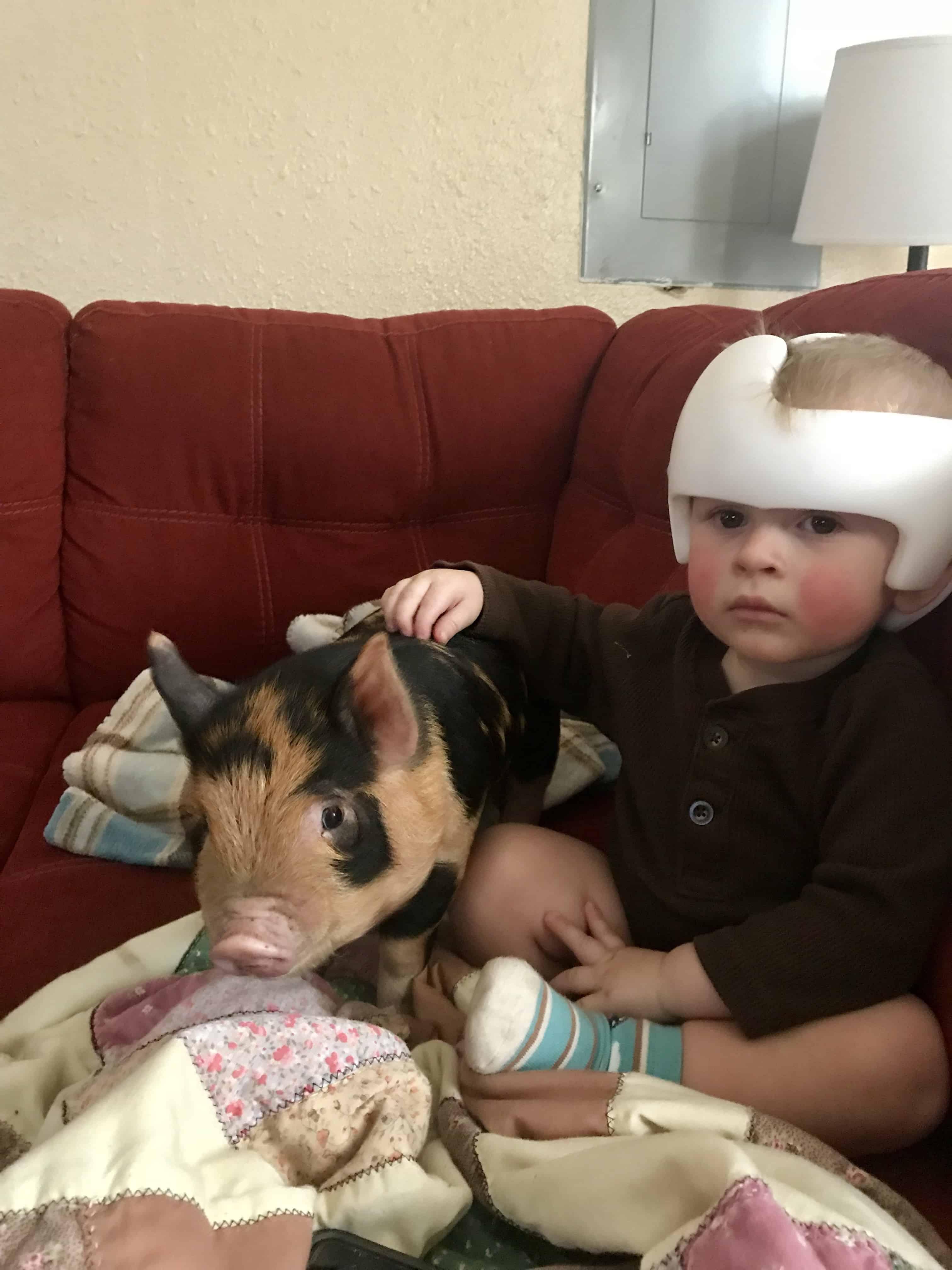 Cranial Helmet FAQ's Answered By A Mom
