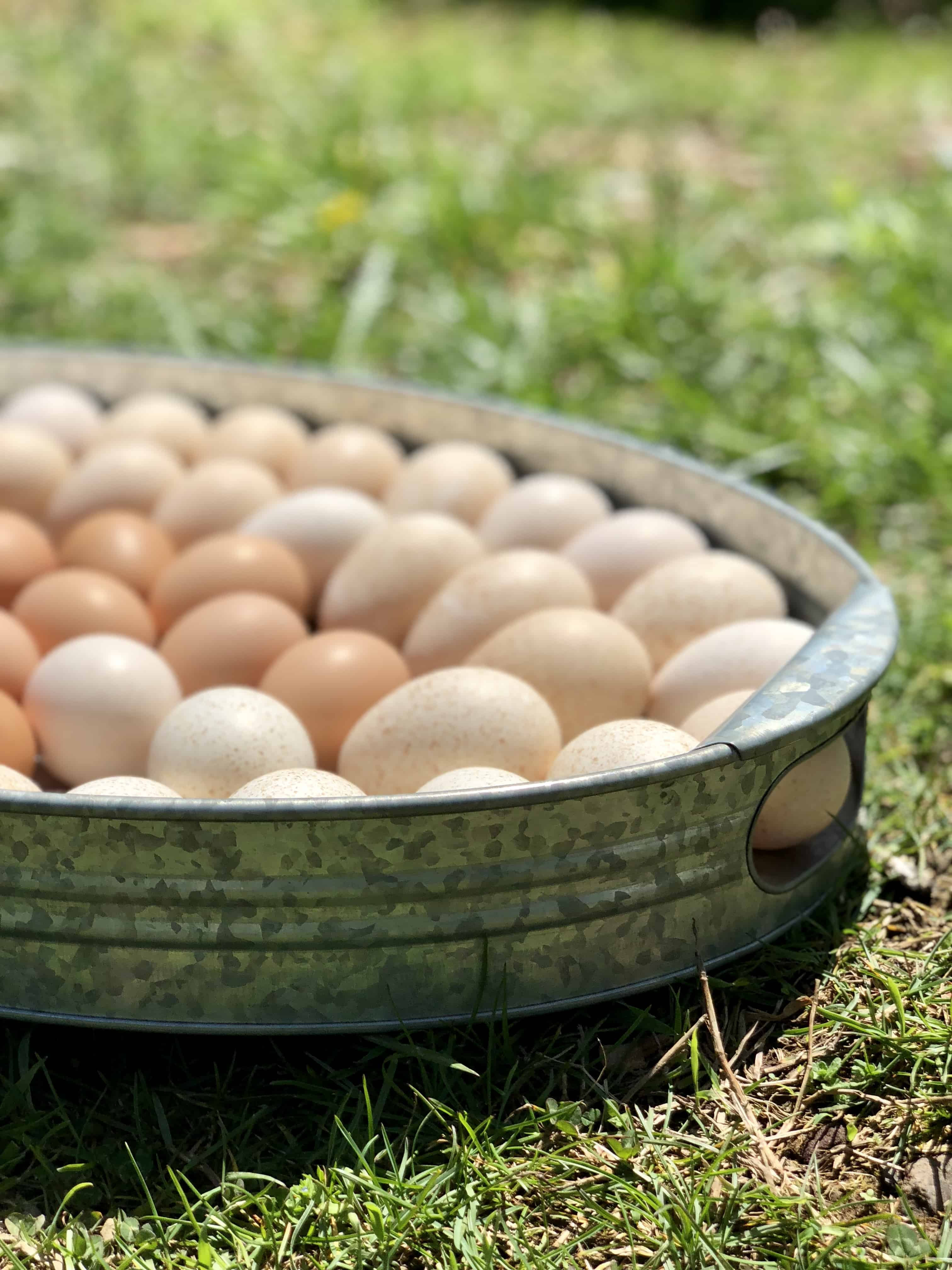 Breakfast Eggs – 20 New Ways to Eat Eggs for Breakfast