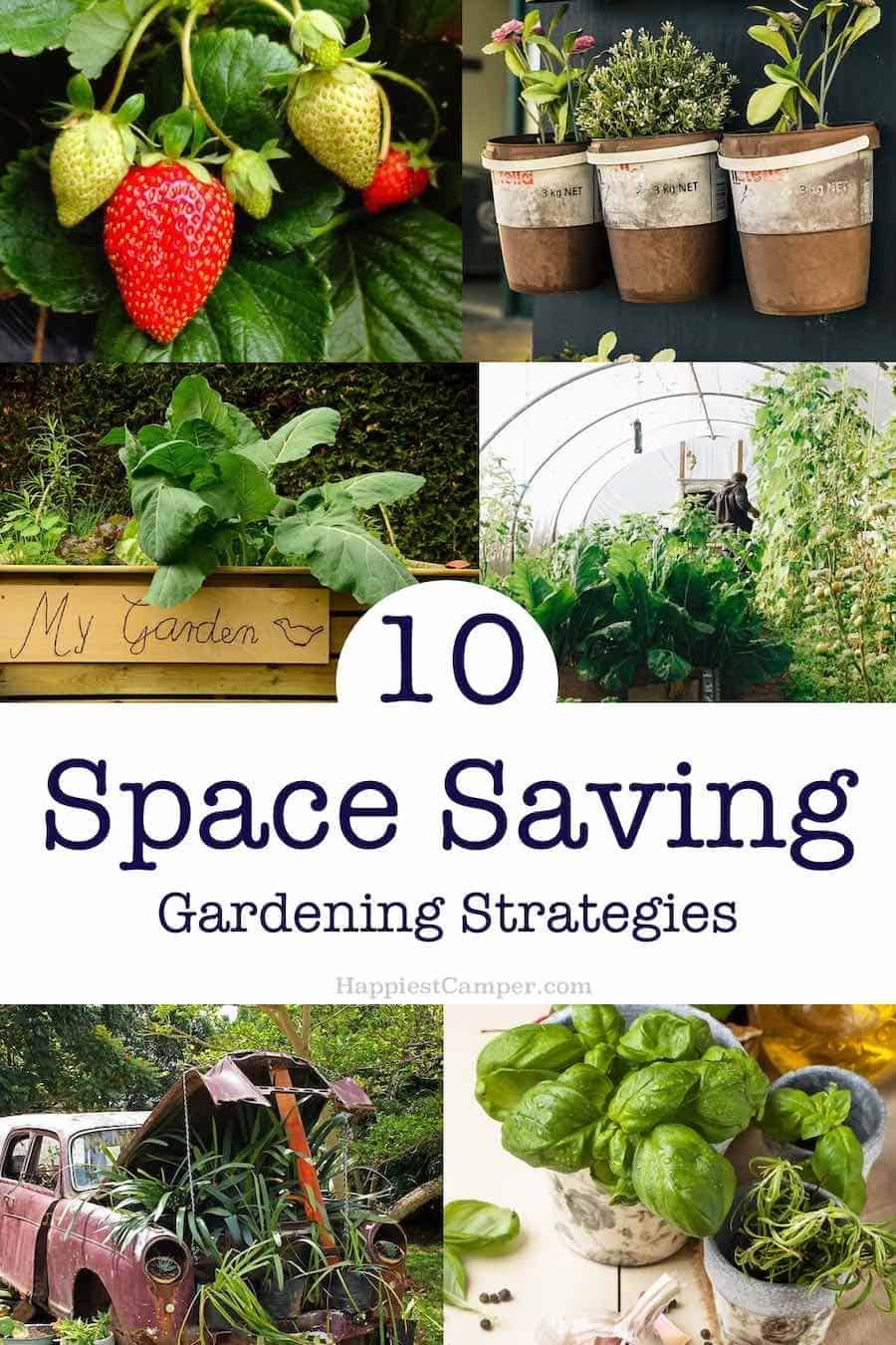 Space Saving Gardening Strategies Pin