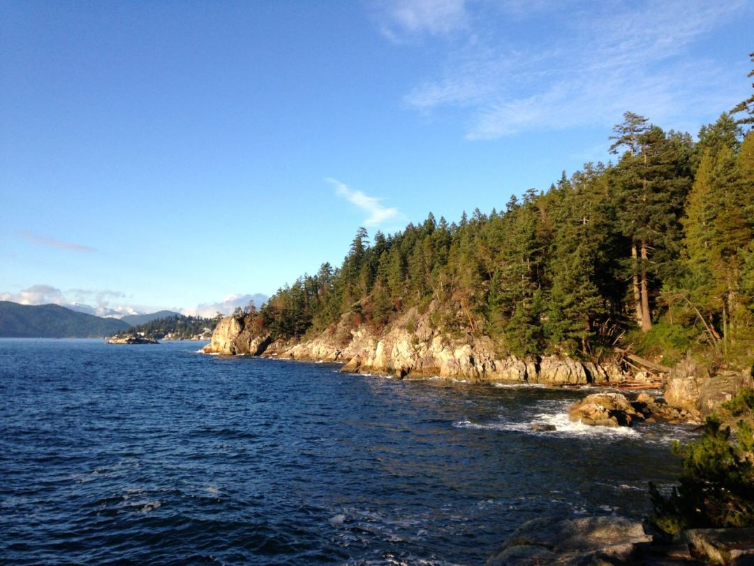 Shore Pine Point in Lighthouse Park
