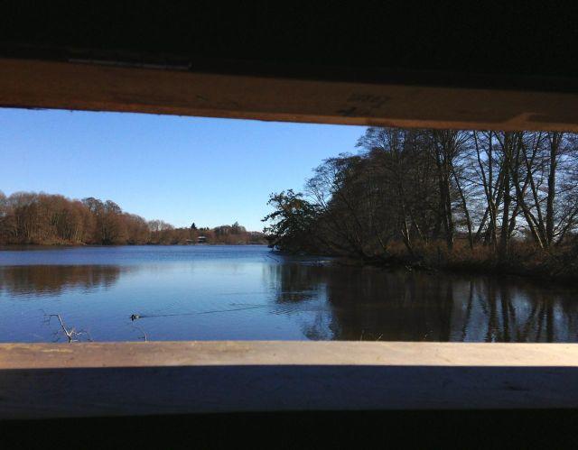 Inside a bird blind at the Reifel Bird Sanctuary