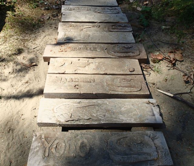 Hand carved boardwalk on the Walk the Wildside Trail