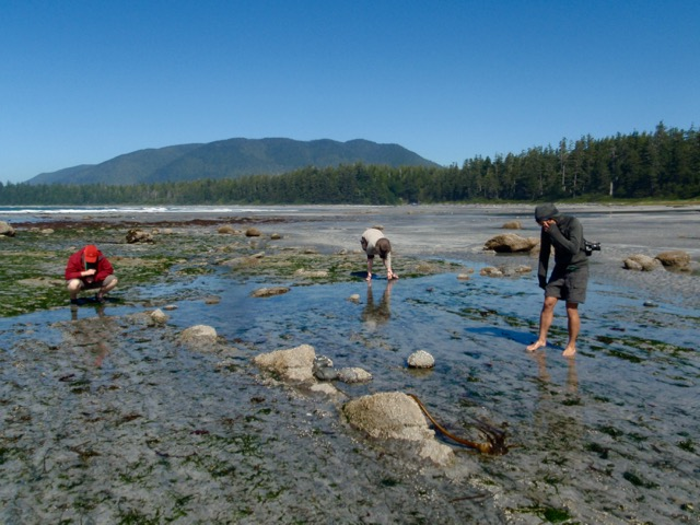 Beachcombing on the Nootka Trail