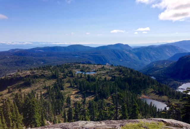 Alpine terrain in Strathcona Provincial Park