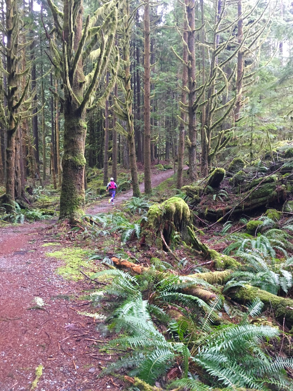 Trail running in North Vancouver