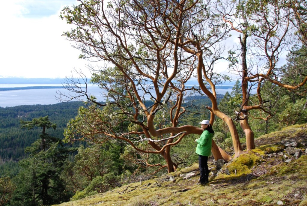Backpacking the Sunshine Coast Trail - Manzanita Bluff
