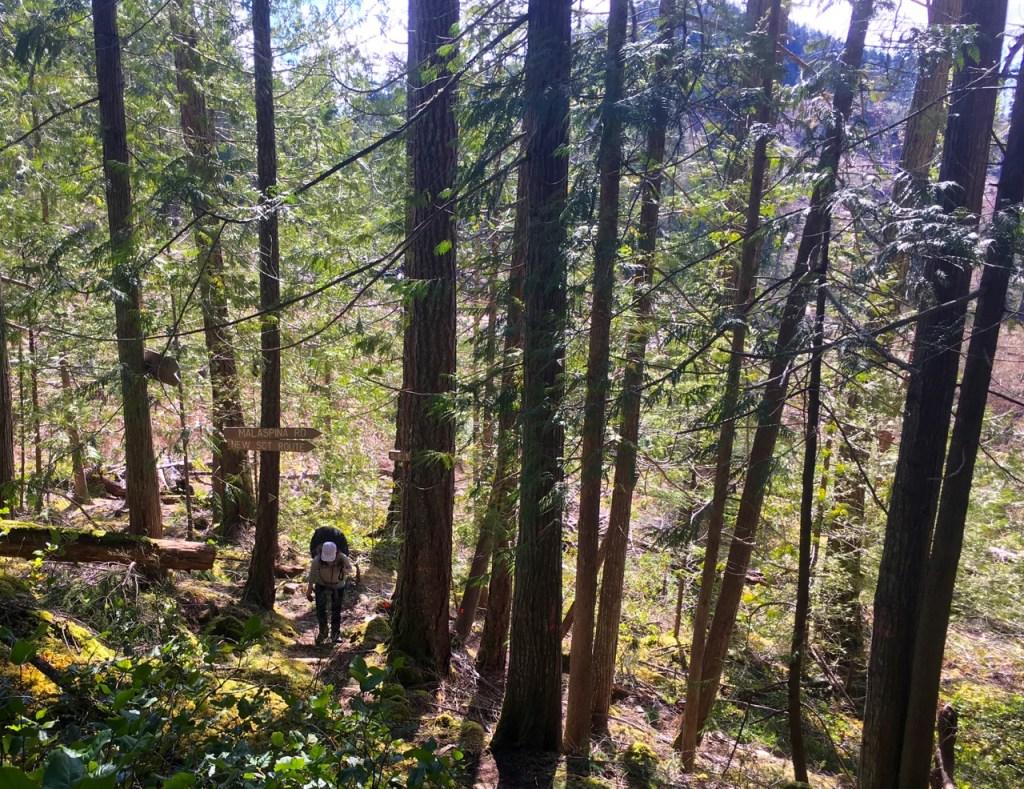Backpacking the Sunshine Coast Trail