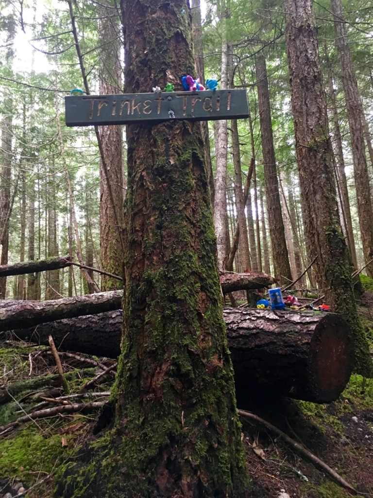 Backpacking the Sunshine Coast Trail - Trinket Trail
