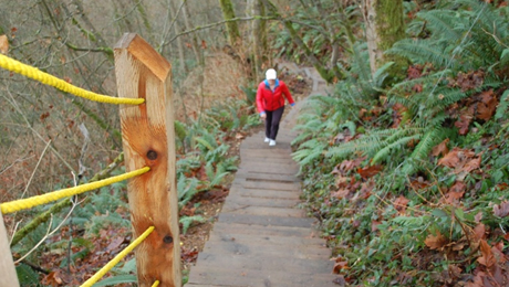 The Velodrome Trail has been called the Burnaby Grind and is an alternative to the Grouse Grind.
