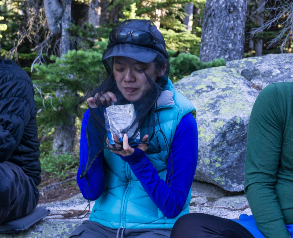 Bugs are one of the most annoying things about summer in the mountains. Be prepared before your next hike: use this handy list of websites to find trail conditions for Vancouver area hikes.