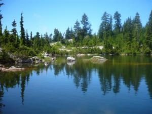 Mystery Lake at Mount Seymour. One of 6 easy hikes in Vancouver for beginners and tourists that deliver gorgeous west coast nature, with minimal effort. Plus they're transit accessible!