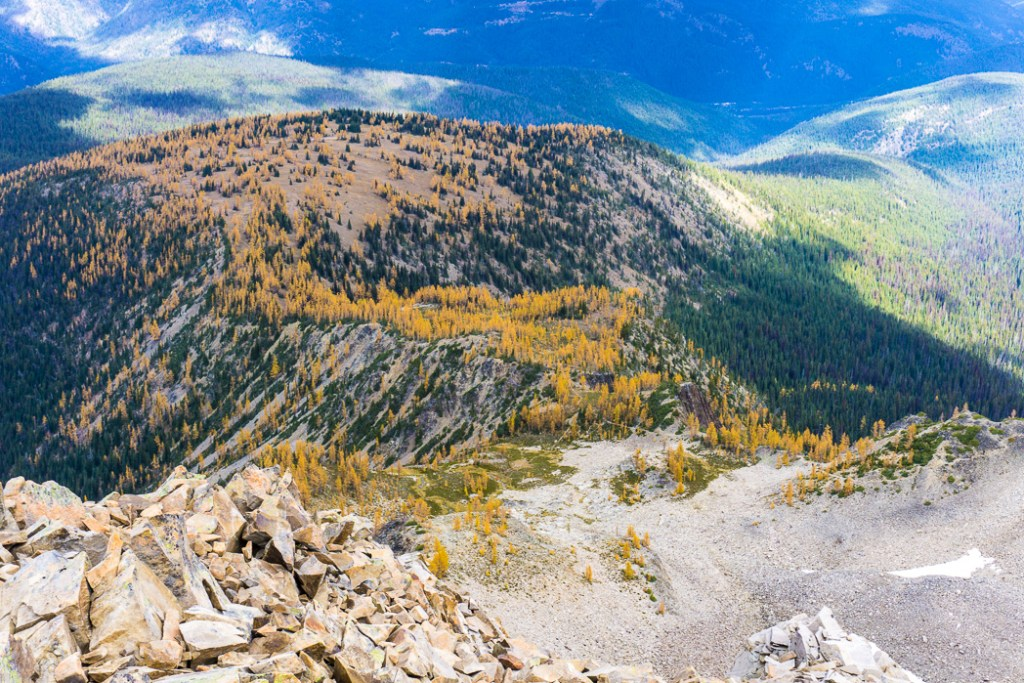 The larch plateau on Frosty Mountain. Hike to the gorgeous Frosty Mountain larches in British Columbia, Canada. Go hiking in the fall to the see the larch trees change colour in Manning Park, BC, Canada.