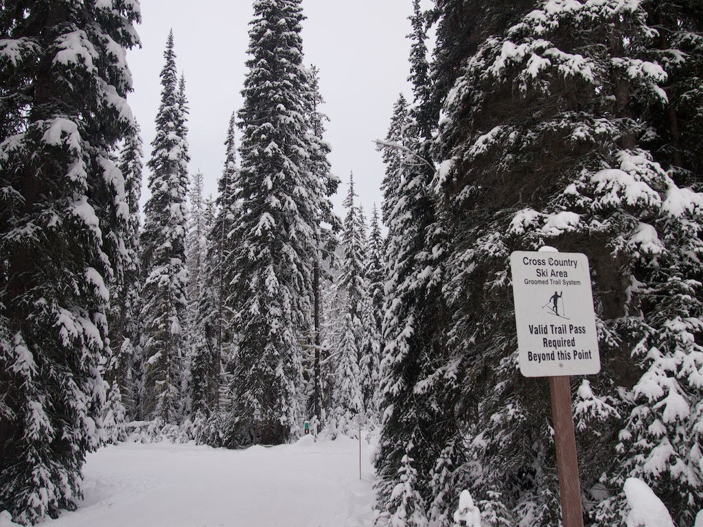 Snowshoeing on the Lodge Trails in Manning Park. Read about how to snowshoe here in the Ultimate Guide to Snowshoeing in Manning Park near Vancouver, BC, Canada