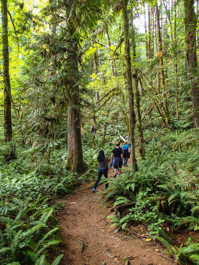 Hiking the Cowichan River Footpath in the Cowichan Valley. It's a great side trip from the Pacific Marine Circle Route on Vancouver Island.