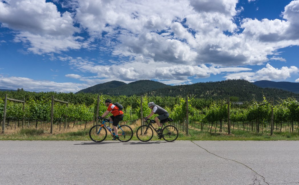 Exploring Summerland's Wineries by bike