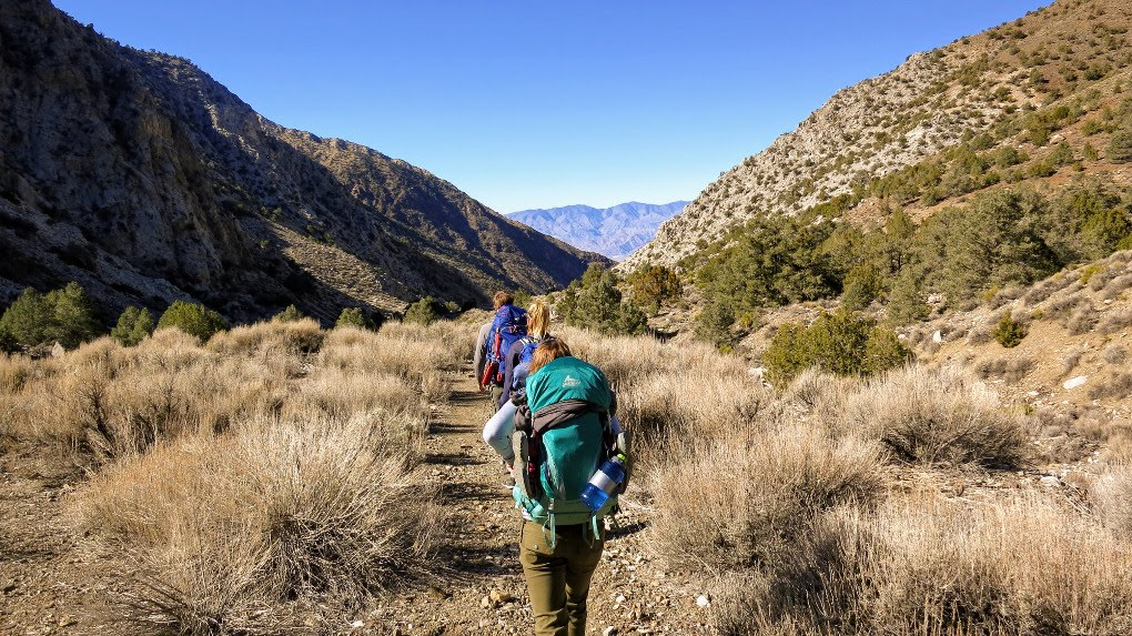 Hiking in Death Valley in California. Get tips for hiking in the desert including what gear you need, what to wear and how to stay safe.