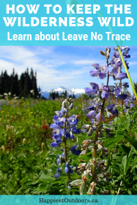 How to keep the wilderness wild: Learn about Leave No Trace to protect nature when you're hiking and camping.