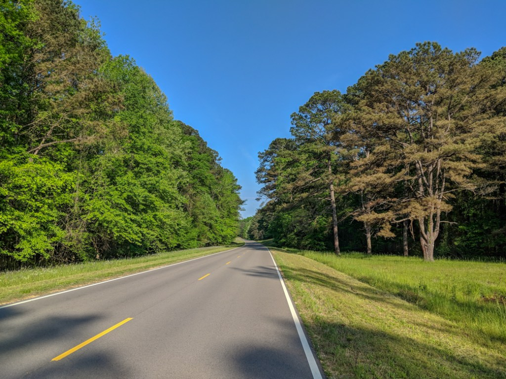 The road along the Natchez Trace Parkway. Learn how to cycle tour the Natchez Trace Parkway in this detailed guide.