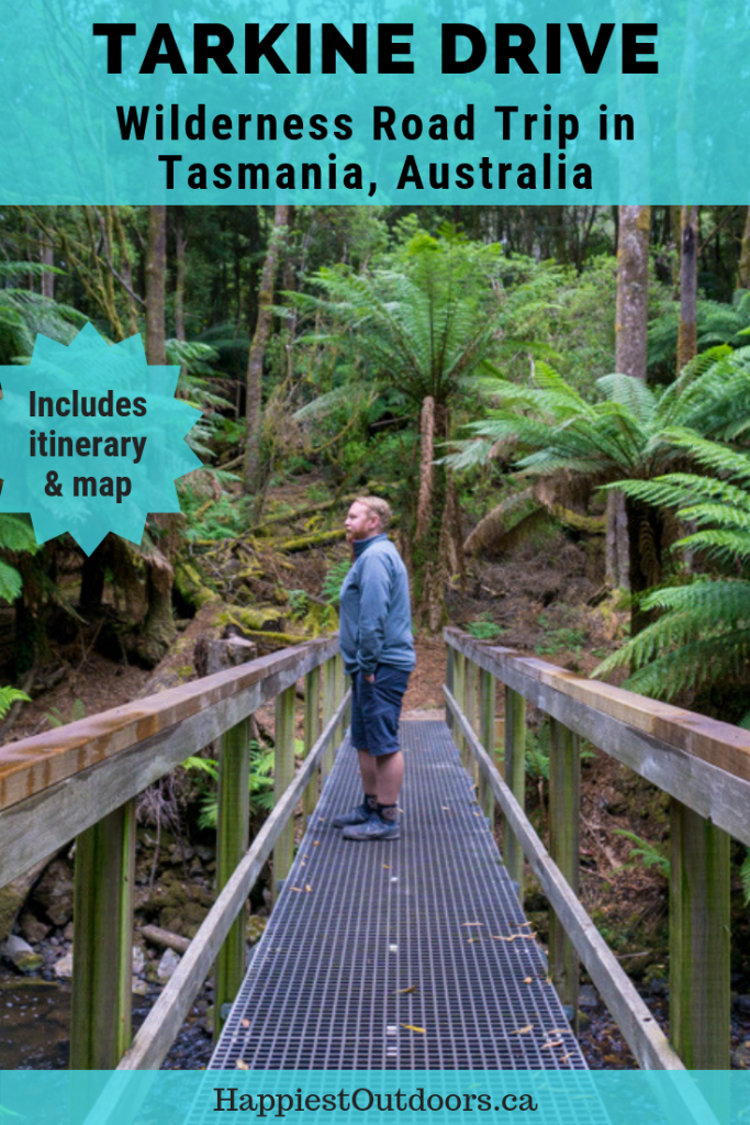 The Ultimate Guide to the Tarkine Drive in Tasmania, Australia. A wilderness road trip with old growth forests, deserted beaches and aboriginal heritage.