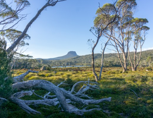 The view of Barn Bluff from the Windermere campground on the Overland Track