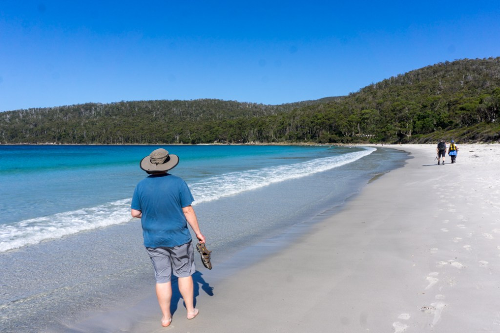 The beach at Fortescue Bay in Tasman National Park in Tasmania, Australia