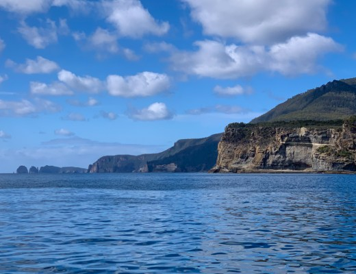 Sea cliffs on the Tasman Peninsula near Port Arthur, Tasmania