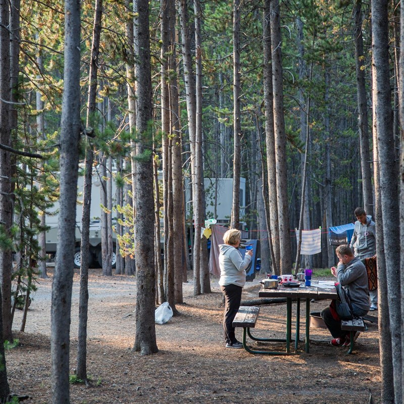 Camping at Canyon campground in Yellowstone National Park