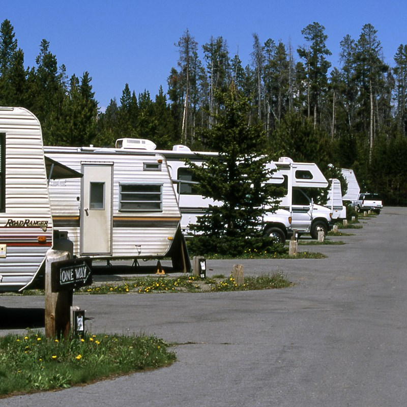 RVs in Fishing Bridge RV Park in Yellowstone National Park
