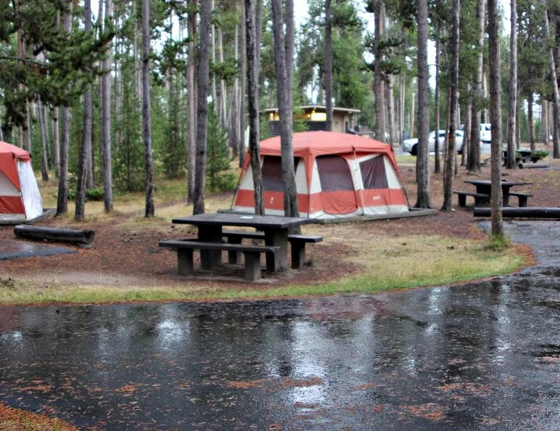 Camping at Madison Campground in Yellowstone National Park