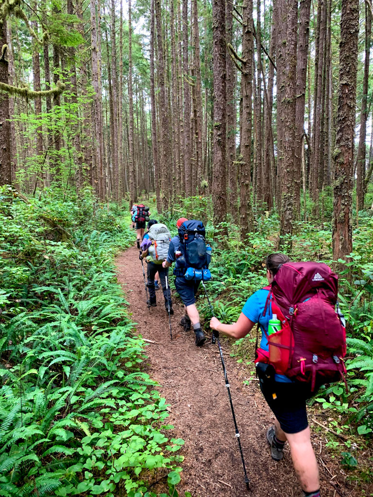 A group of hikers wearing backpacks on the West Coast Trail