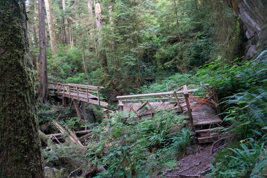 A wrecked bridge on the southern-most West Coast Trail section
