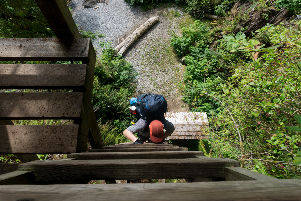 The final steep ladder at Gordon River on the West Coast Trail