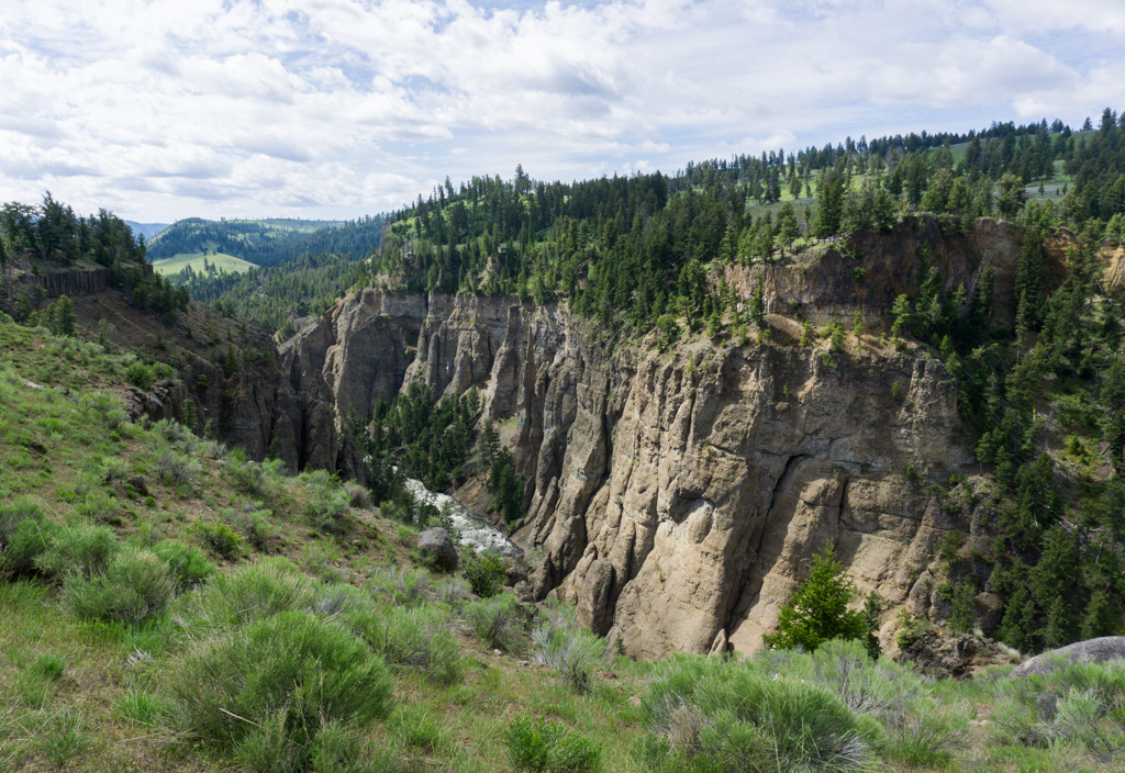 Yellowstone River Picnic Area Trail in Yellowstone National Park