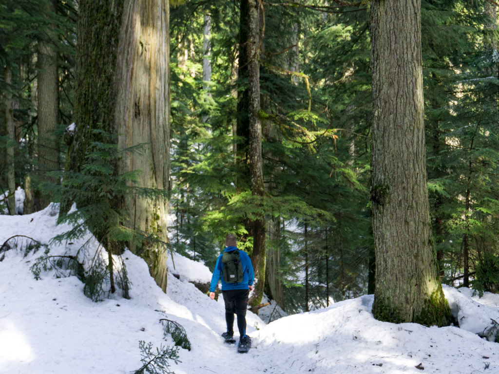 Snowshoeing near Vancouver. Find out how to choose snowshoes