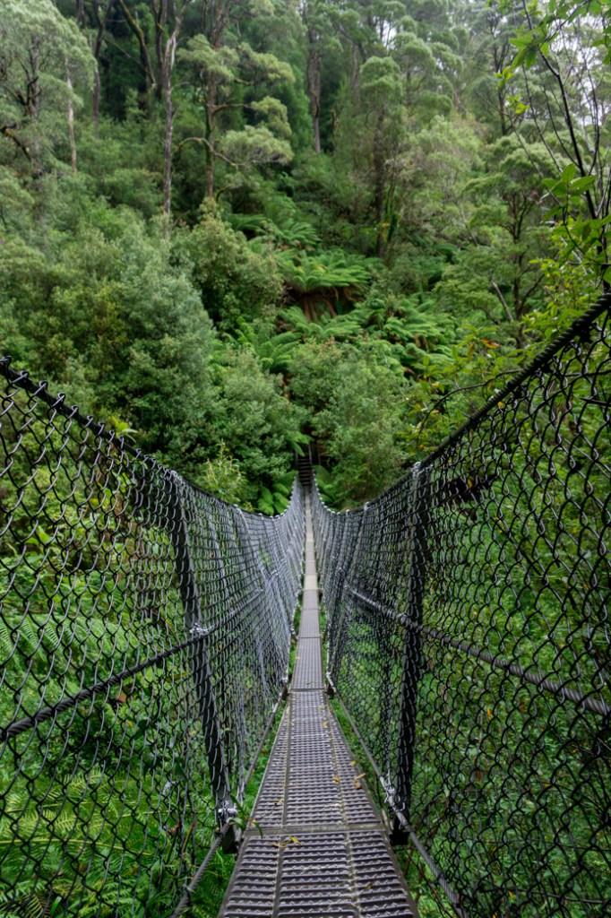 The suspension bridge at Montezuma Falls in Roseberry, Tasmania