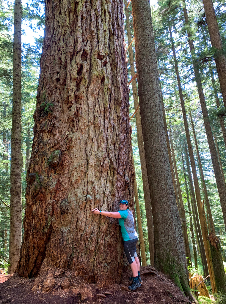 A plus sized female hiker hugs a very large tree. She's wearing a Smartwool shirt - one of our recommendations for the best women's plus size hiking clothes