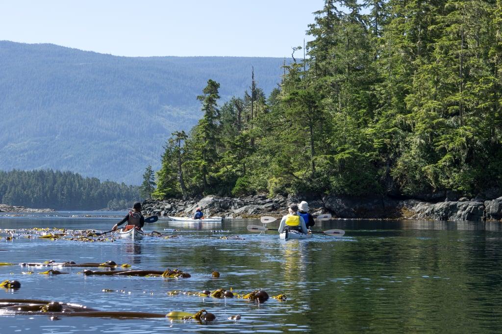 Kayaking through the Plumper Islands in the Johnstone Strait