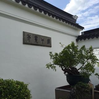 Chinese Garden 10