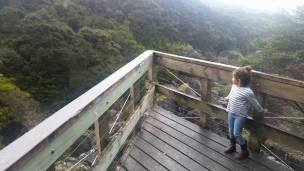The viewing platform at the top of the valley.