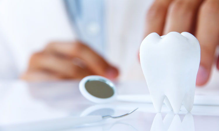 Dental Plans For You and Your Family