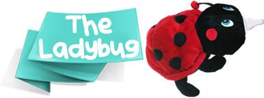 ladybug bottle pet