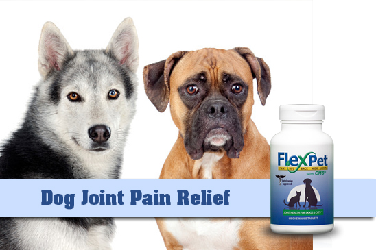 for-flexpet