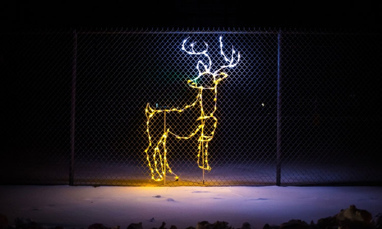New Hampshire Motor Speedway Gift of Lights #giftoflights #NH