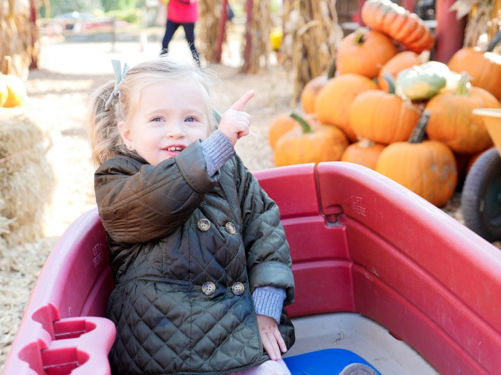 Marlowe Martino, wearing an olive green quilted peacoat at silverman's pumpkin patch in connecticut