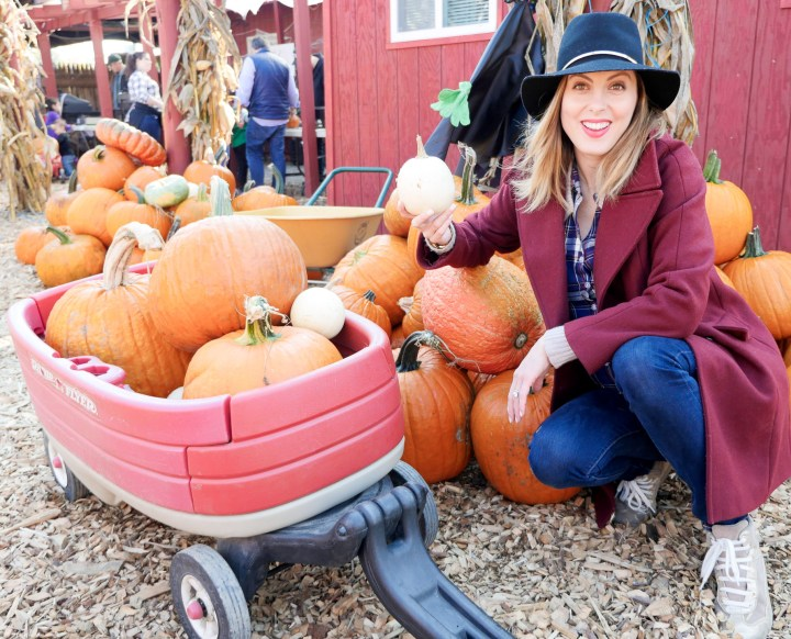 Eva Amurri Martino of lifestyle and motherhood blog Happily Eva After, wearing dark denim maternity jeans, a plaid maternity shirt, an oxblood peacoat and navy felt hat at 39 weeks pregnant, collecting pumpkins at Silverman's pumpkin patch in Connecticut