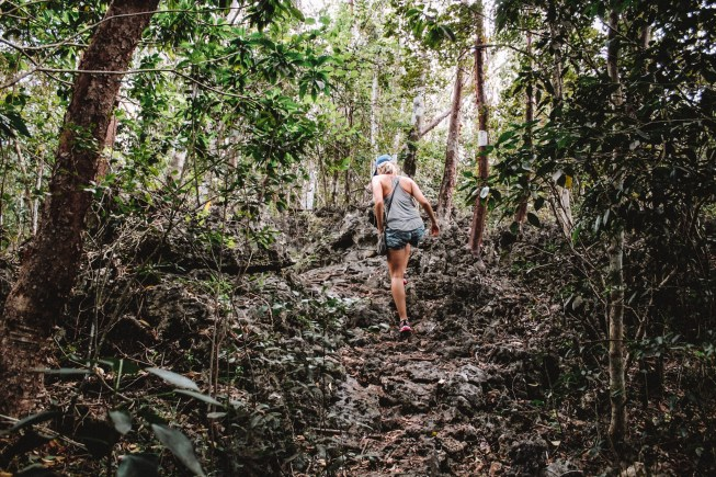 Hiking Cayman's Mastic Trail | Happily in Pursuit